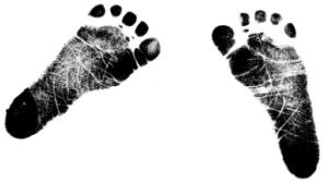 Mya footprints