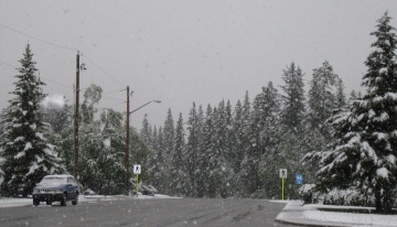 Snow in Canmore