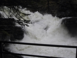 Water rushing through Johnston Canyon