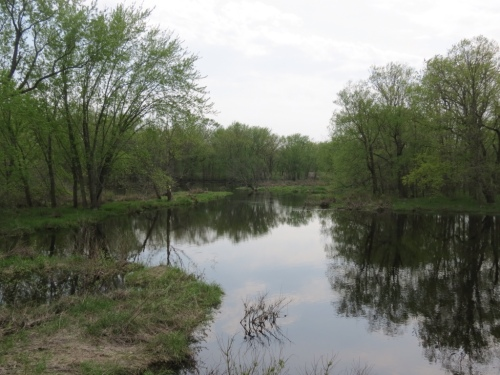 Wetlands alongside the trail