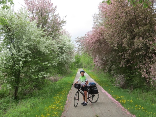 Molly among flowering trees on the trail