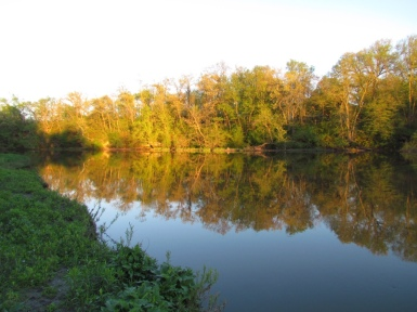 The Zumbro River in Mantorville