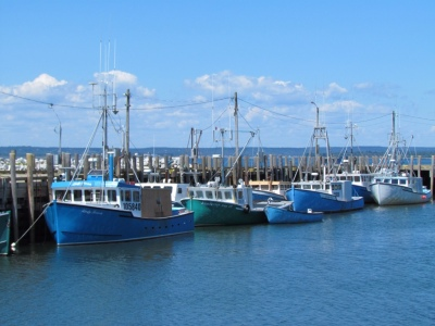 Fishing boats at Whitehead Island