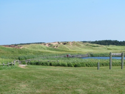 Sand dunes at Cavendish Beach