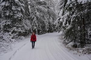 337-Birds-365-Caribou-Trail