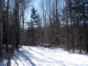 Lester Amity Trails 3
