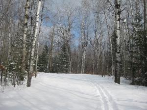 Lester new snow 2