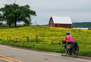 Molly cycling in Arkansas