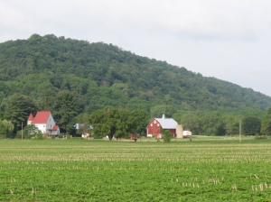 Farm south of the river
