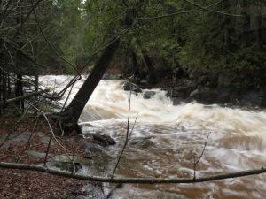 Amity Creek