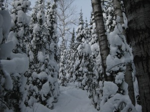 Snowshoeing at Bearskin Lodge