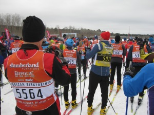 Birkebeiner starting line
