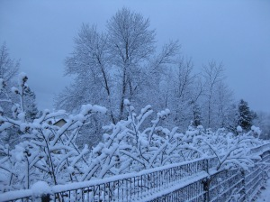 March Snowfall 1