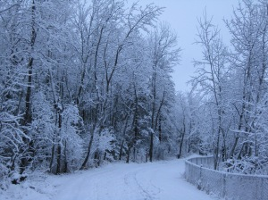 March Snowfall 2