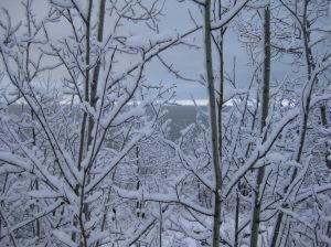 March Snowfall 6