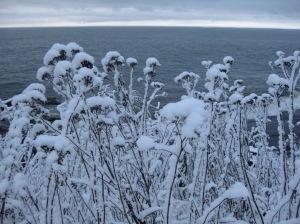 March Snowfall 3