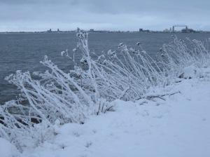 March Snowfall 5