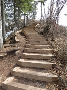 Modern steps in the park