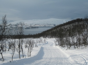 Sunny ski trail down to the fjord