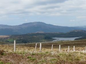 Near Loch Ness