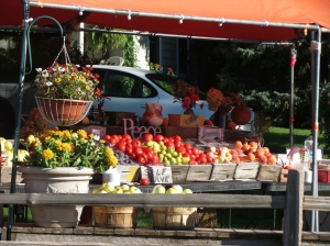 Farm Market on Old Mission Peninsula