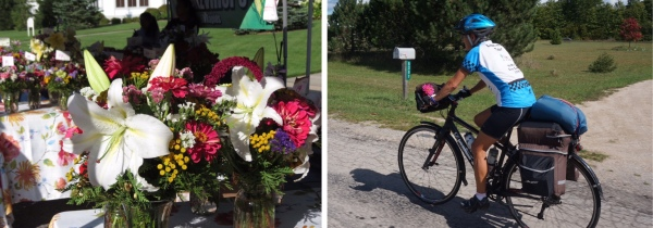 Flowers for cycling