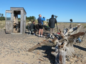 Rich birding Whitefish Point