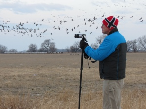 Rich photographing sandhill cranes