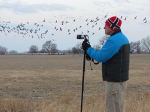 Rich photographing sandhill cranes