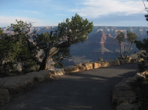 Grand Canyon Rim Tail 2