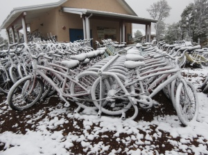 Snowy bikes at Grand Canyon