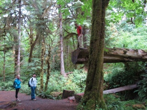 HOH Rain Forest hike