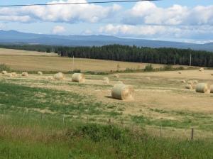 BC farmland