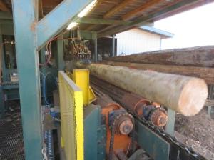 Sawmill 1