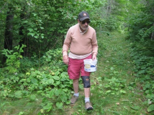 Bill blackberry picking