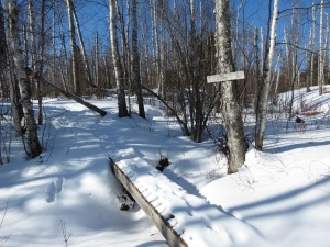 Snowshoeing SHT 1