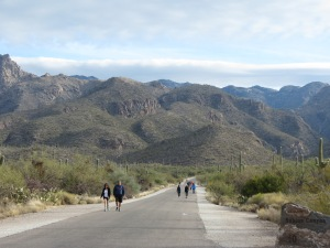 Pedestrians walking Sabino Canyon