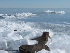 Brighton Beach ice 2