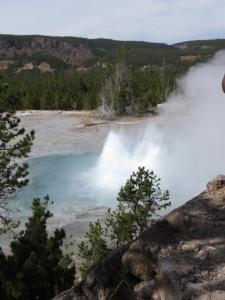Artemisia geyser