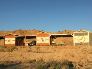 Terlingua Nights Cabins
