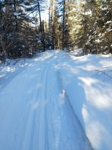 Northwoods Ski Trails