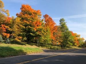 Skyline Drive fall colors 1