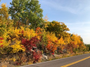 Skyline Drive fall colors 2