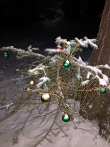 Christmas decorations in the woods