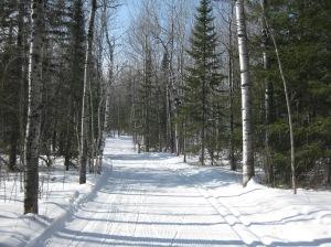 Lester ski trail